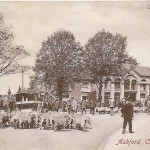 Ashford - Catttle Market