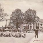 Ashford - Catttle Market