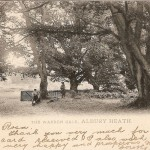 Albury Heath - WarrenGate