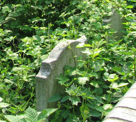 Quakers Lane Jews Burial Ground in need of help!