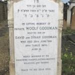 Goodman W @409 29-06-1918
