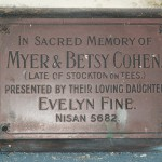 Evelyn Fine, my Grandmother.