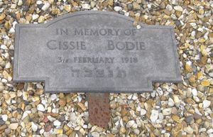 tn_Bodie C 1 @408 WW1 Civilian Casualty 28-01-1919