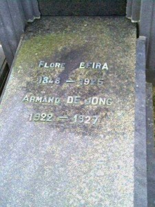 De Jong Armand_Efira Flore