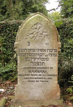 Cohen, Barbara (married name)