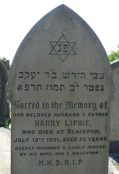 Lipkie, Harry
