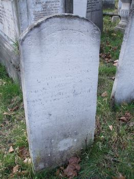 Collins, Louisa