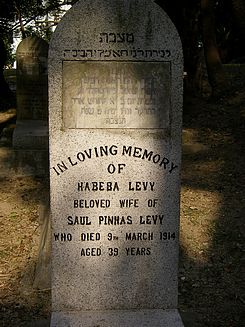 Levy, Habeba (married name)