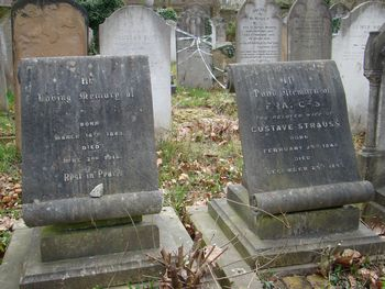 Strauss, Gustave and Frances (married name)