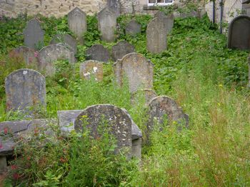 Bath Jewish Burial Ground - General view