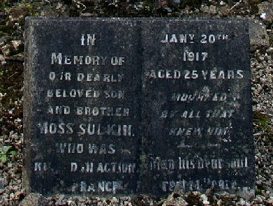 Sulkin Moss WW1 20 Jan 1917